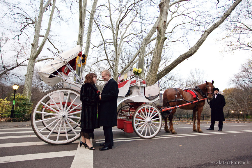horse and carriage marriage proposal