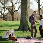 Central Park Picnic proposal idea