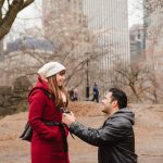new york central park proposal story