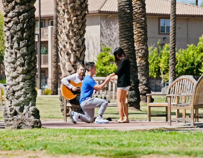 Phoenix Outdoor Park Marriage Proposal Creative Romantic